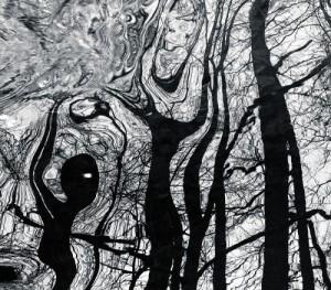 """Lars Andreasn Dybvik, gañador na categoría 'Forma e Composición' coa imaxe titulada """"O baile"""""""