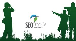 seo_birdlife