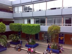Exemplo de espazos verdes nunha escola / Imaxe: Anders Leipzing