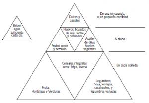 Figura 1: Pirámide vexetariana