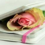 Día da Poesía: unha escolma de recursos